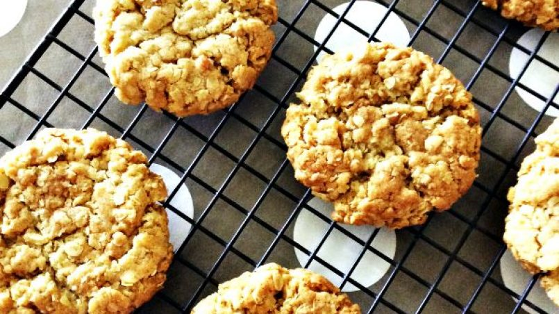 cookies para perros