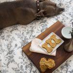 receta de galletas para perro