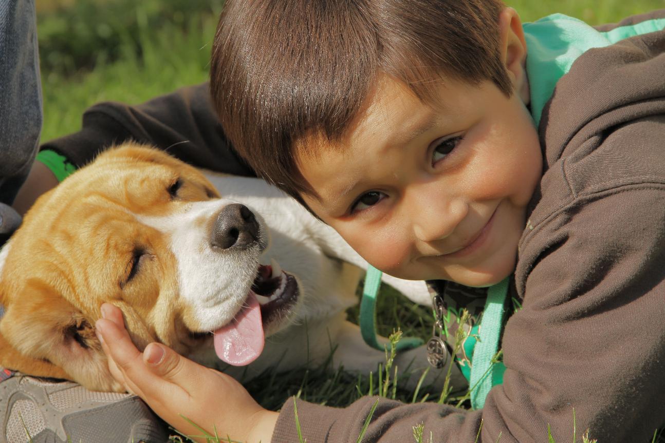 Resultado de imagen de perros i niños