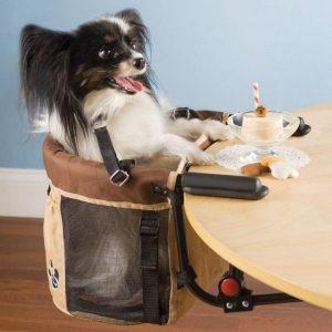 perros humanizados