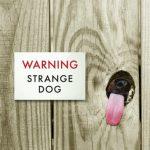 cartel cuidado con el perro