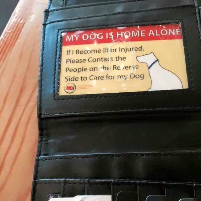 tarjeta de seguridad para perros