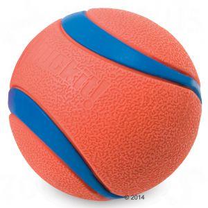 pelota para perro