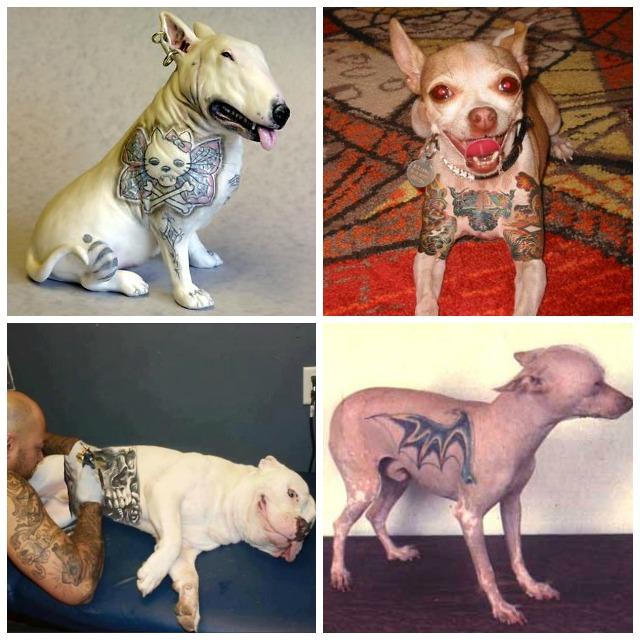 pendientes para perros