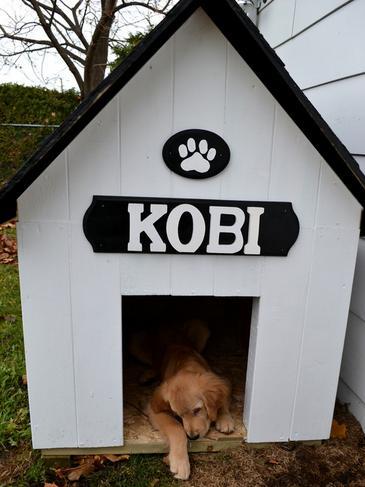C mo hacer una casa para perro de exterior c mo educar a - Casas para belenes hechas a mano ...