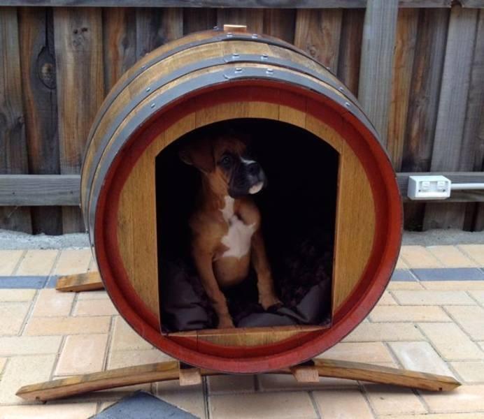 C mo hacer una casa para perro de exterior c mo educar a - Como hacer una casa para perro grande ...