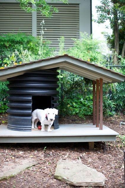 casa para perro de exterior