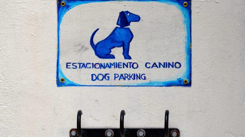 aparca perros