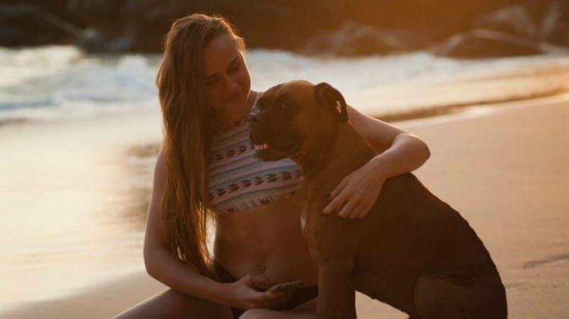 embarazadas y perros
